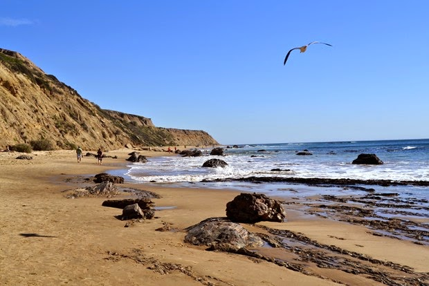 crystalcove14