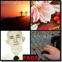 FADE- 4 Pics 1 Word Answers 3 Letters