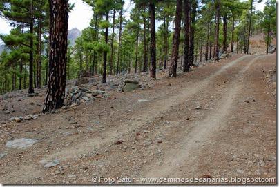 6909 Circular Cruz Grande(Pista y camino a Cruz Grande)