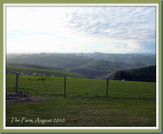 The Farm, August 2010 Framed