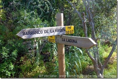5442 La Laguna-Vueltas Acero-Firgas
