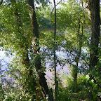 Loire rive droite aux Rompeys, à Marclopt photo #1201