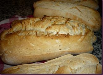 Pane con pasta madre (9)