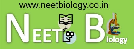 NEET biology Questions
