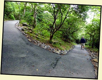 12b - Trail - paved but steep