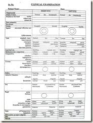 Histology slides database january 2013 for Ophthalmology exam template