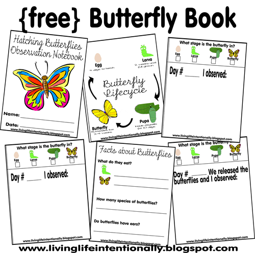 Worksheets for Kids - FREE Butterfly Notebook #preschool #kindergarten #homeschooling