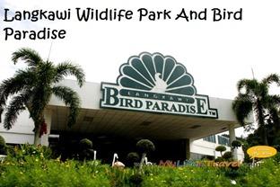 Langkawi bird paradise 03