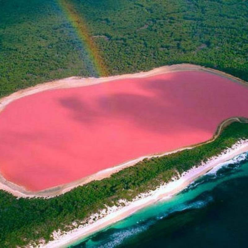 Pink Lake Hillier in Australia