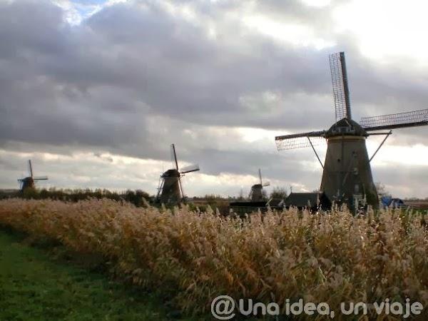 Molinos-Kinderdijk-5.jpg