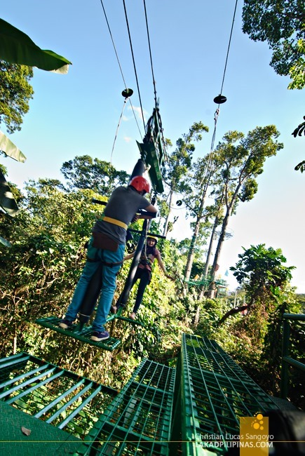Riding the Silver Surfer at Subic's Tree Top Adventure