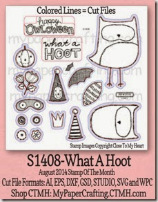 what a hoot aug sotm-350_thumb[2]