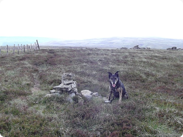 middlehope moor summit