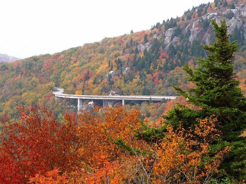 linn-cove-viaduct-7
