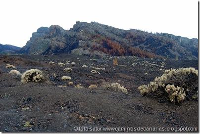 019 Cañadas del Teide