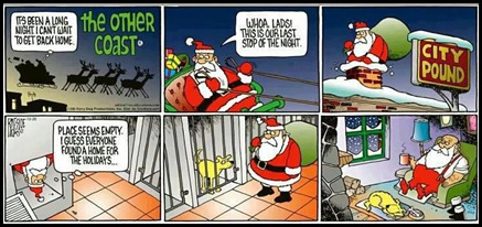 Santa at the animal shelter