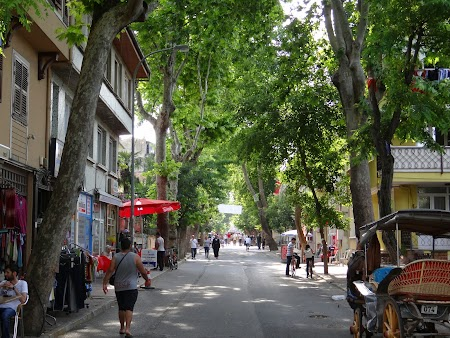 38. Pe strada din Buyukada.JPG