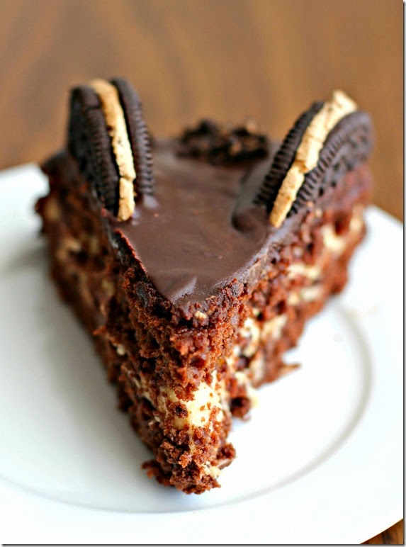 Chocolate Chip Cookie Dough Oreo Cake3