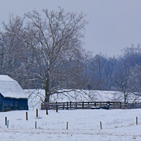 BLUE BARN by William Stewart - Landscapes Weather ( winter, nature, snow, barns, scenery, landscapes )