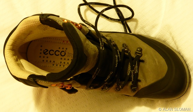 NEW ECCO BIOM HIKES