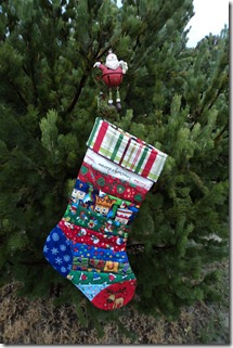 QAYG Stocking 2011
