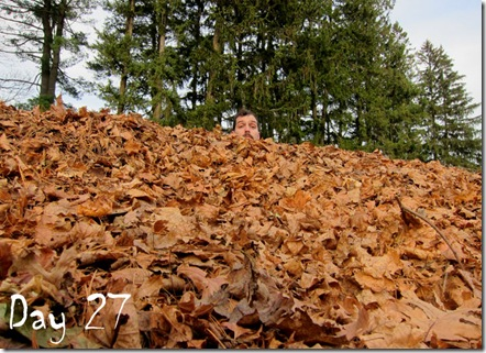 leaf pile day 27 movember