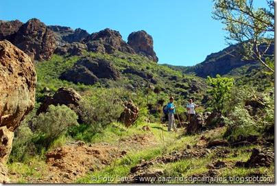 7656 El Aserrador-Paso Herradura(Riscos Ayacata)