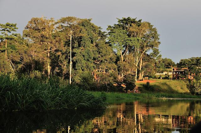 Coucher de soleil sur Ebogo (Cameroun), 29 avril 2013. Photo : Daniel Milan