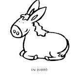 Burro_2_g.jpg