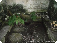 inside the holy well