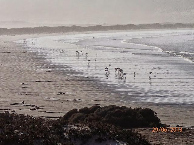 Sossusvlei Dunes 007.JPG