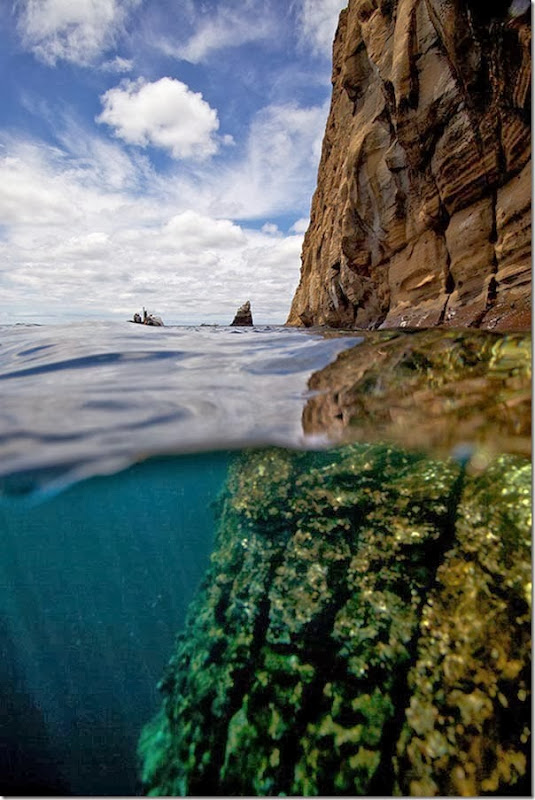 Split-View-Galapagos-Islands[6]