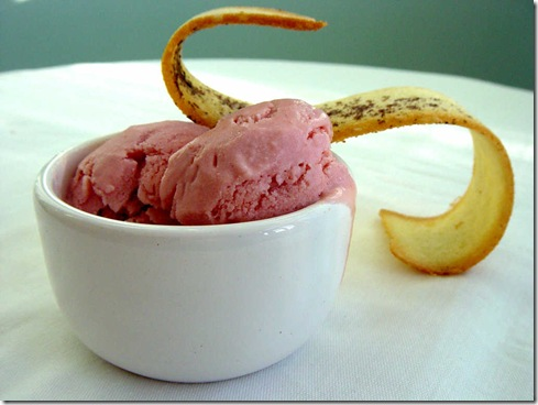 Strawberry and Pomegranate Frozen Yogurt