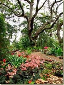 Bon You Might Also Like: Heathcote Botanical Garden