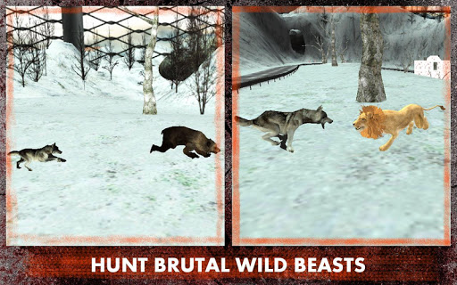野狼攻击模拟器3D|玩模擬App免費|玩APPs