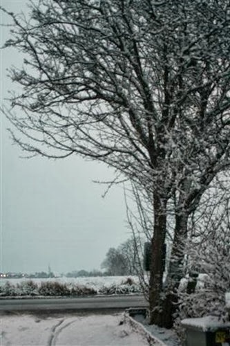 20091217 (2) (Small)