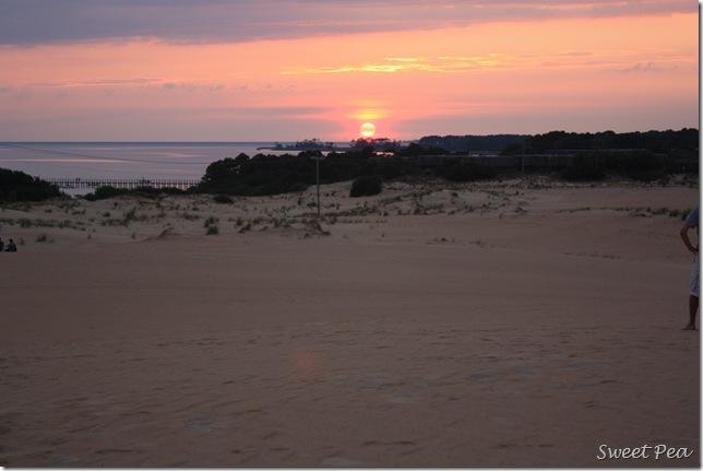 Beach Dunes7
