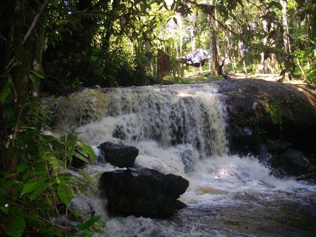 Aux environs du Gîte Moutouchi. Photo : Moutouchi-Guyane