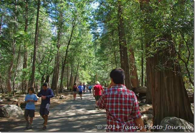 Walking along the Bridalveil Fall Trail