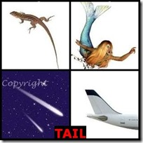 TAIL- 4 Pics 1 Word Answers 3 Letters