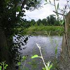 Loire au niveau d'Épercieux-Saint-Paul, amont, rive droite photo #1019