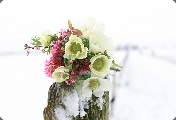 5472223441_2eee8942a5floret flower farm