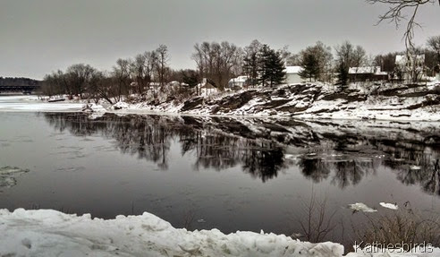 1. Androscoggin river in Topsham 1-6-15 cell pic