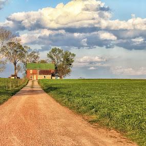 The American Farm by Sharon Horn - Landscapes Prairies, Meadows & Fields ( clouds, field, farm, farm lane, country lane, american farm, farming, country )