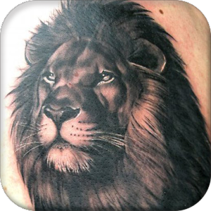 download lion tattoo designs for pc. Black Bedroom Furniture Sets. Home Design Ideas