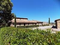 Etrusco 5_Lajatico_7