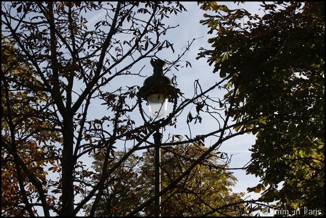 Lamp post Tuilleries