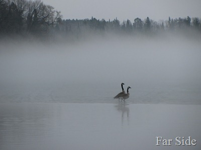 Long Lake Fog March 17