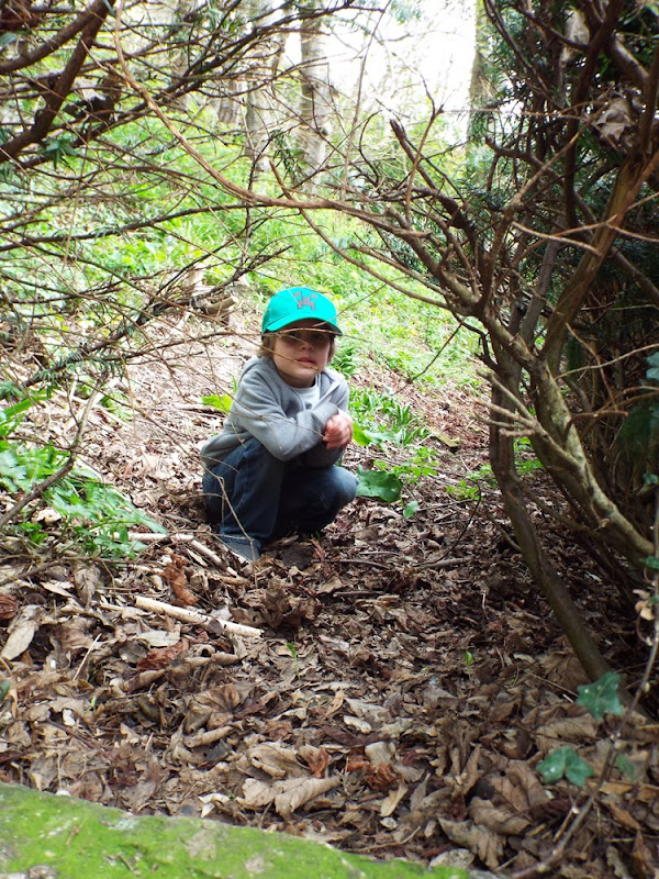 Ahren in the woods