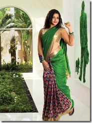 Vandana Menon in saree